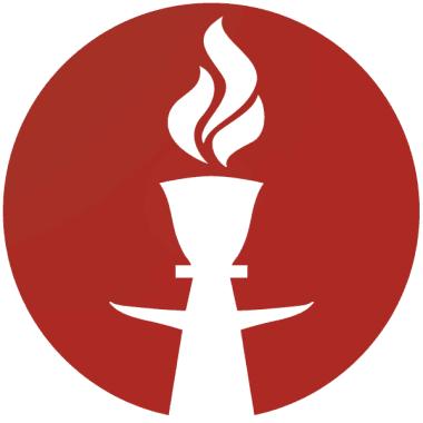 vizipipaeu logo